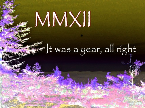 MMXIIIwild